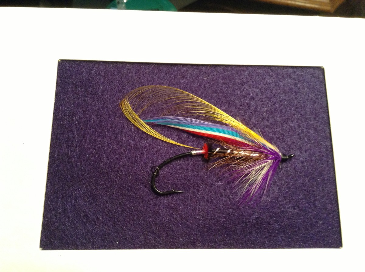 A single Atlantic Salmon Fly, all alone and in need of a home!
