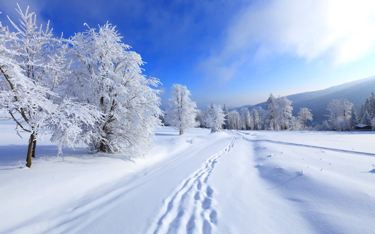 This winter scene is beautiful, but nobody wants to have winter all year long.