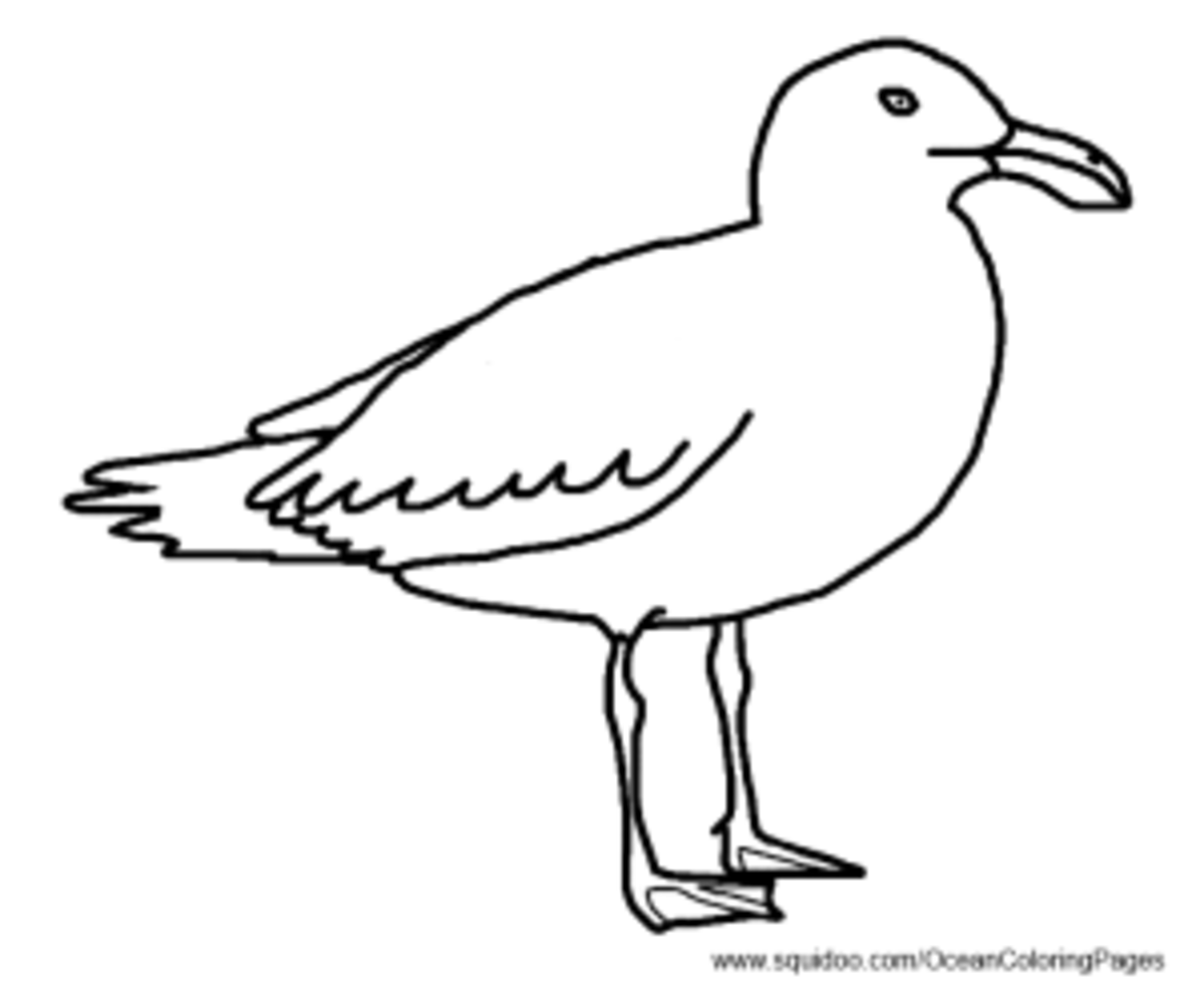 Ocean Animal Facts And Coloring Pages Hubpages