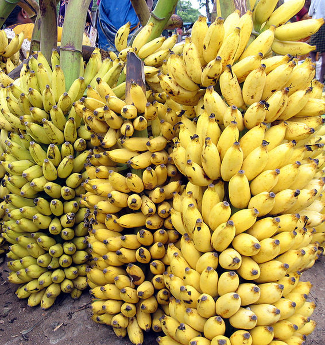 Ripe Bananas, source: Wikipedia