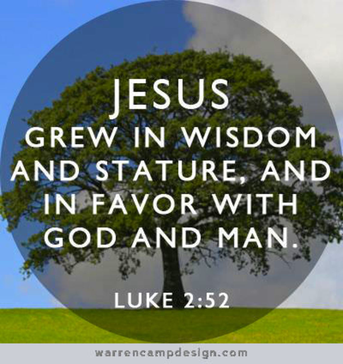 This statement summarizes Jesus' status when He was 12. We don't hear from Him until He was 30 years old.