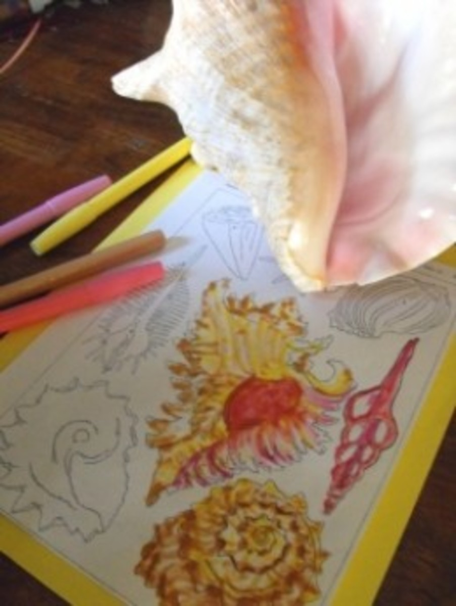 Paperfacet's Haeckel Coloring Page