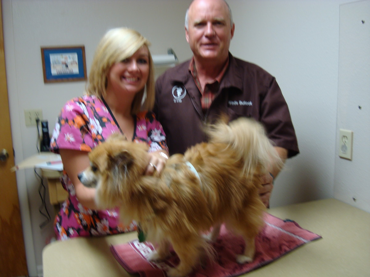 Sweetie and Dr. Bullock with an assistant