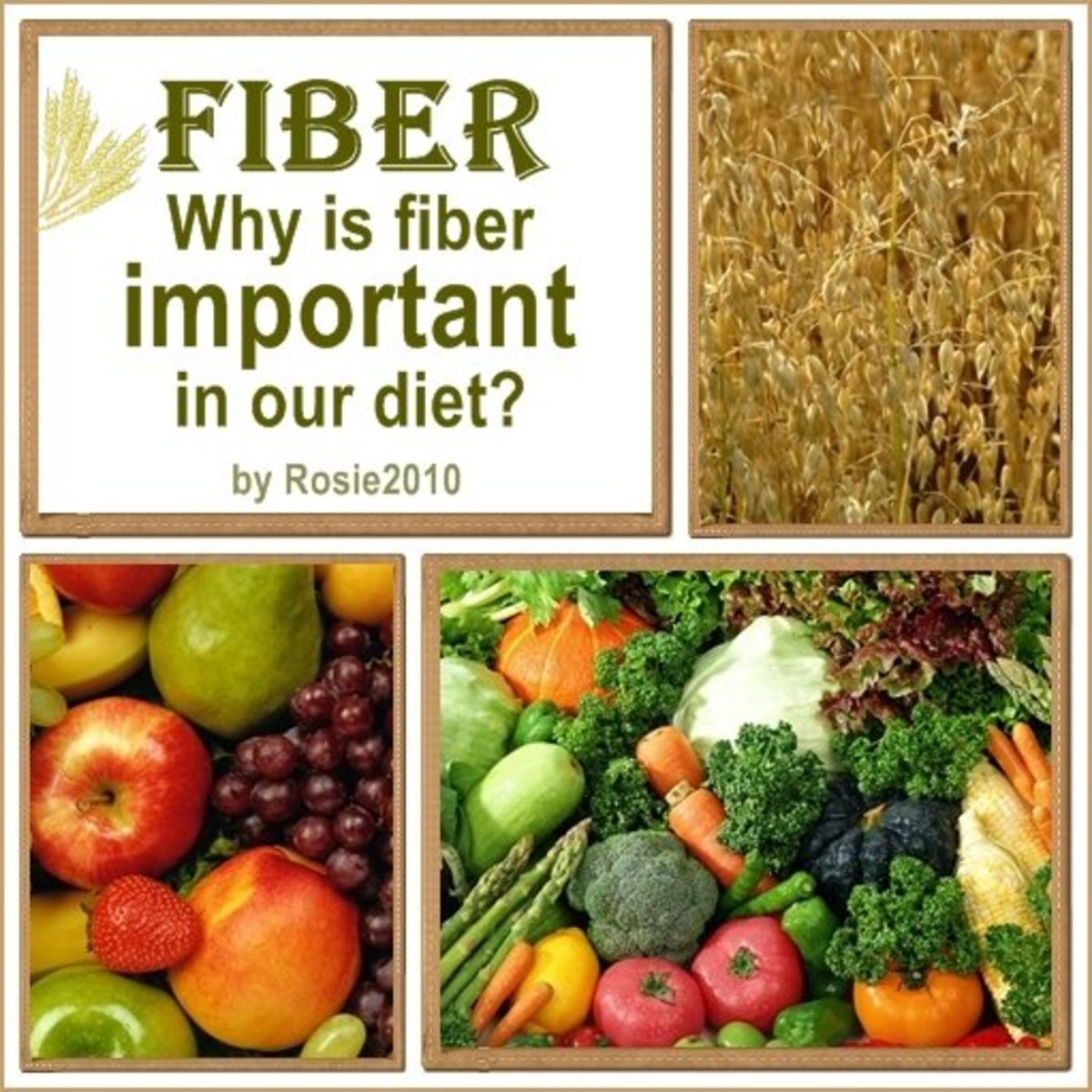 - What is Fiber and Why is Fiber Important in our Diet? by Rosie2010 -