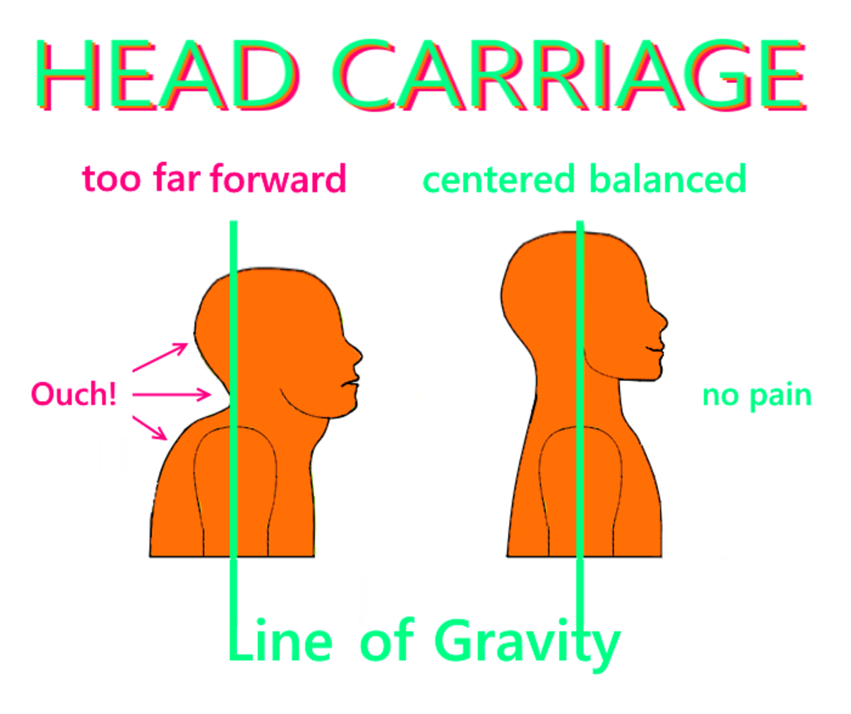 The green line shows the line of gravity. Holding the head in front of the body creates a double chin, a short, over-curved neck and much pain to go with it.