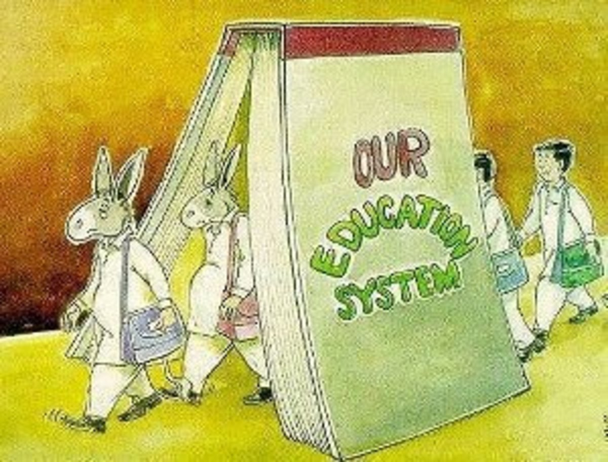 What is Education? - The Concept of Education