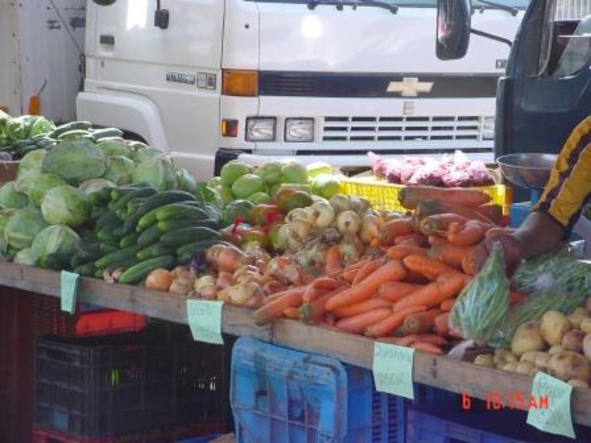 Saturday Famer's Market, Santa Cruz, Guanacaste