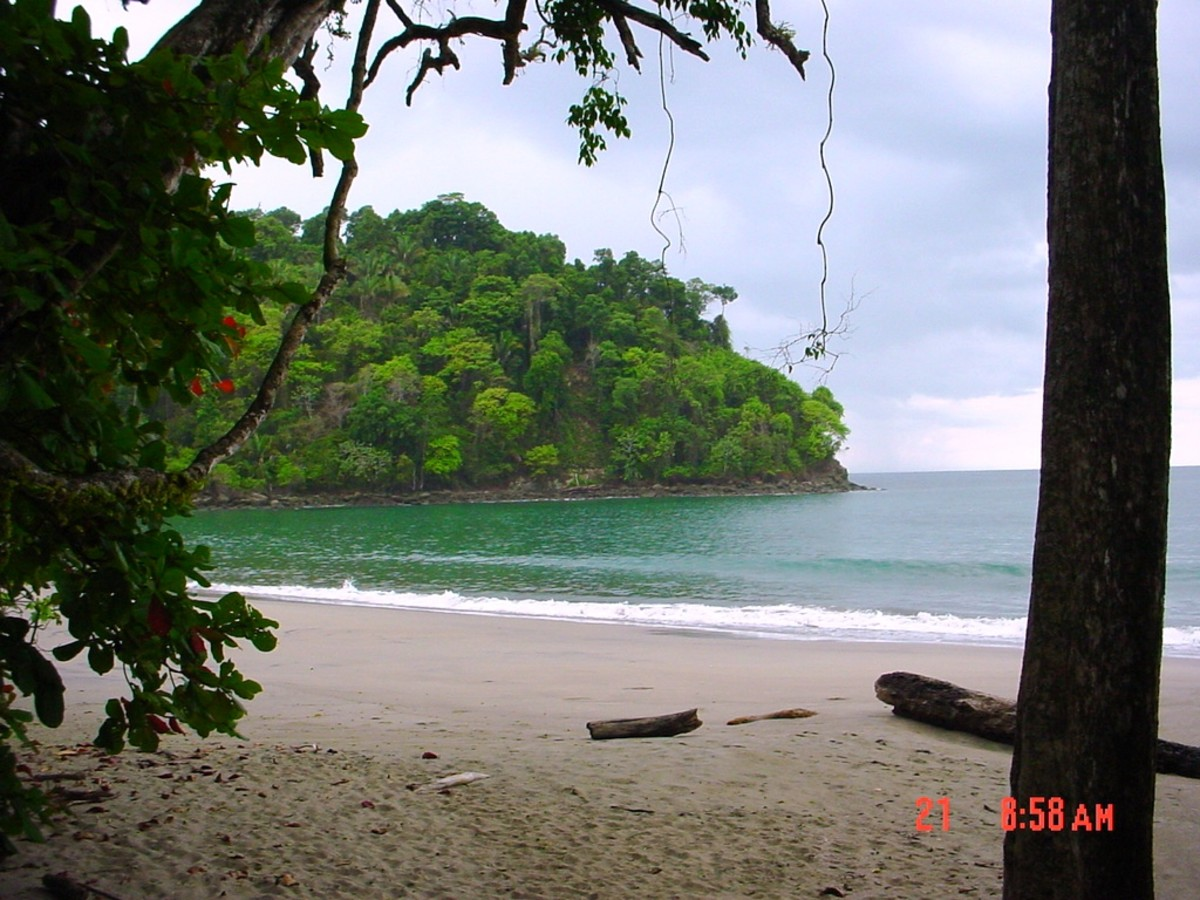 Manuel Antonio National Park on the Central Pacific coast near the town of Quepos.