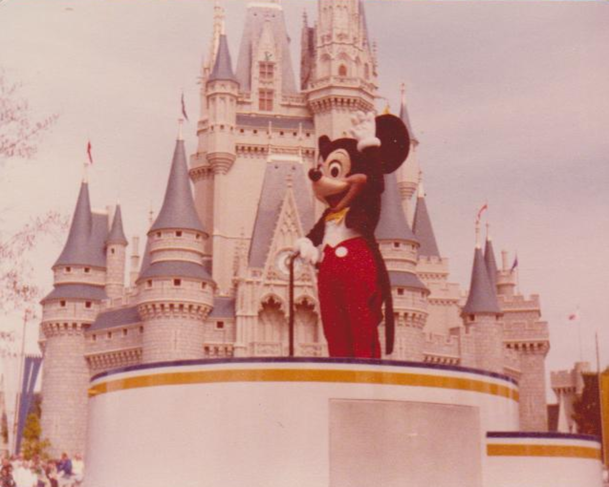 Mickey and the castle  Check the other picture out from Xmas at Disney 2010 A little different