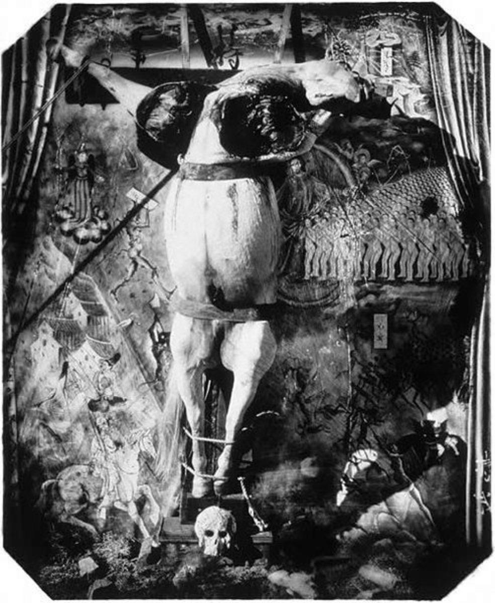 Figure 1. Crucified Horse (1999)