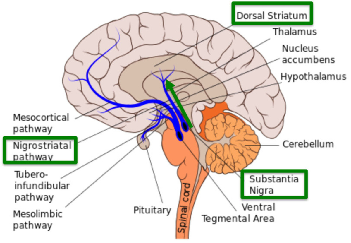 anti-psychotics-other-drugs-may-cause-tardive-dyskinesia