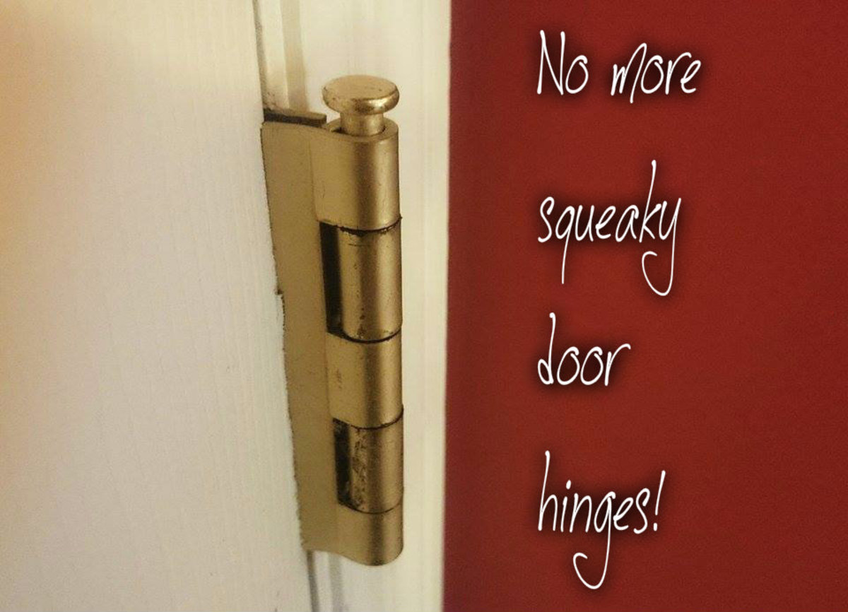 Get in between the casing that holds the door hinge together to eliminate the creaking.