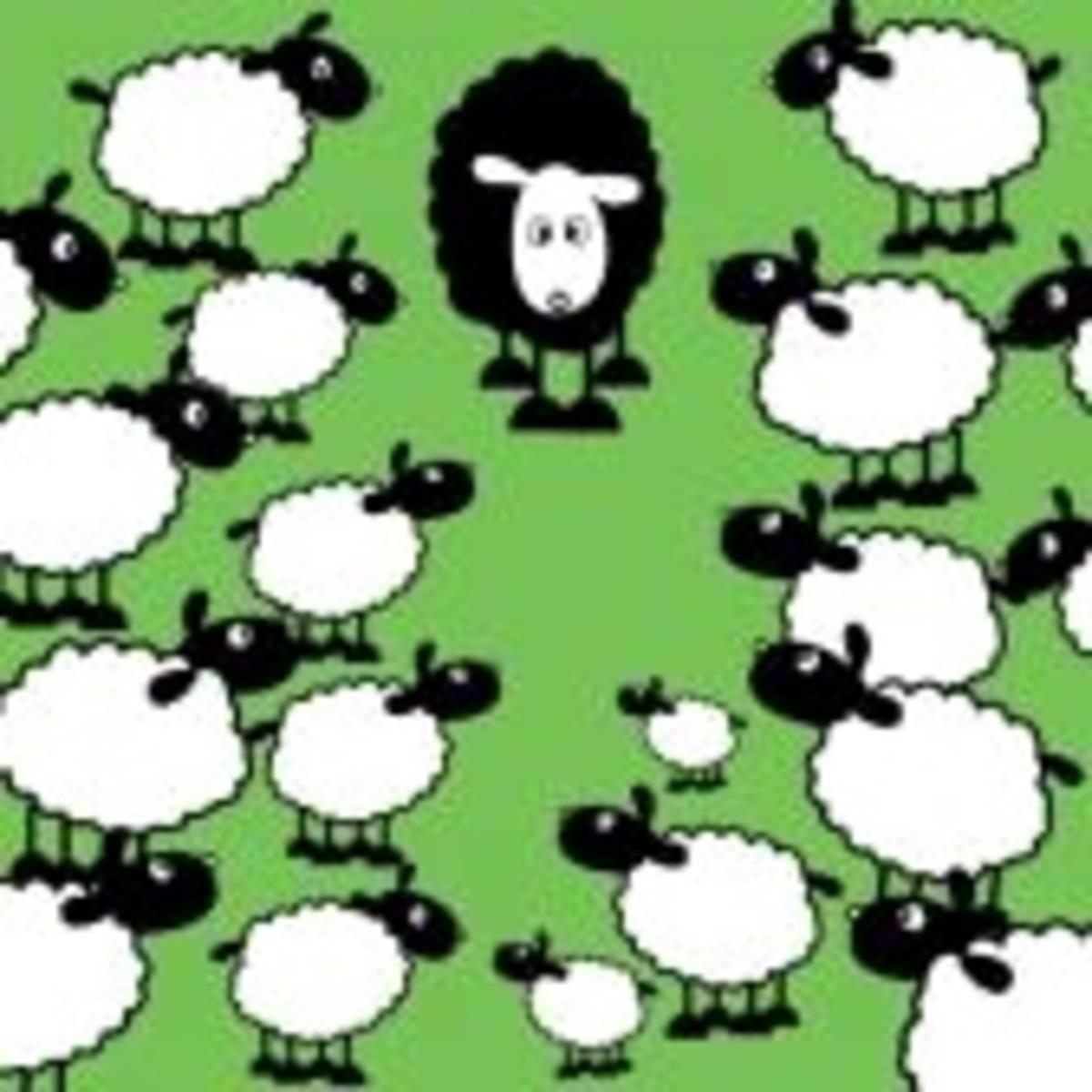 the-really-meaning-of-baa-baa-black-sheep