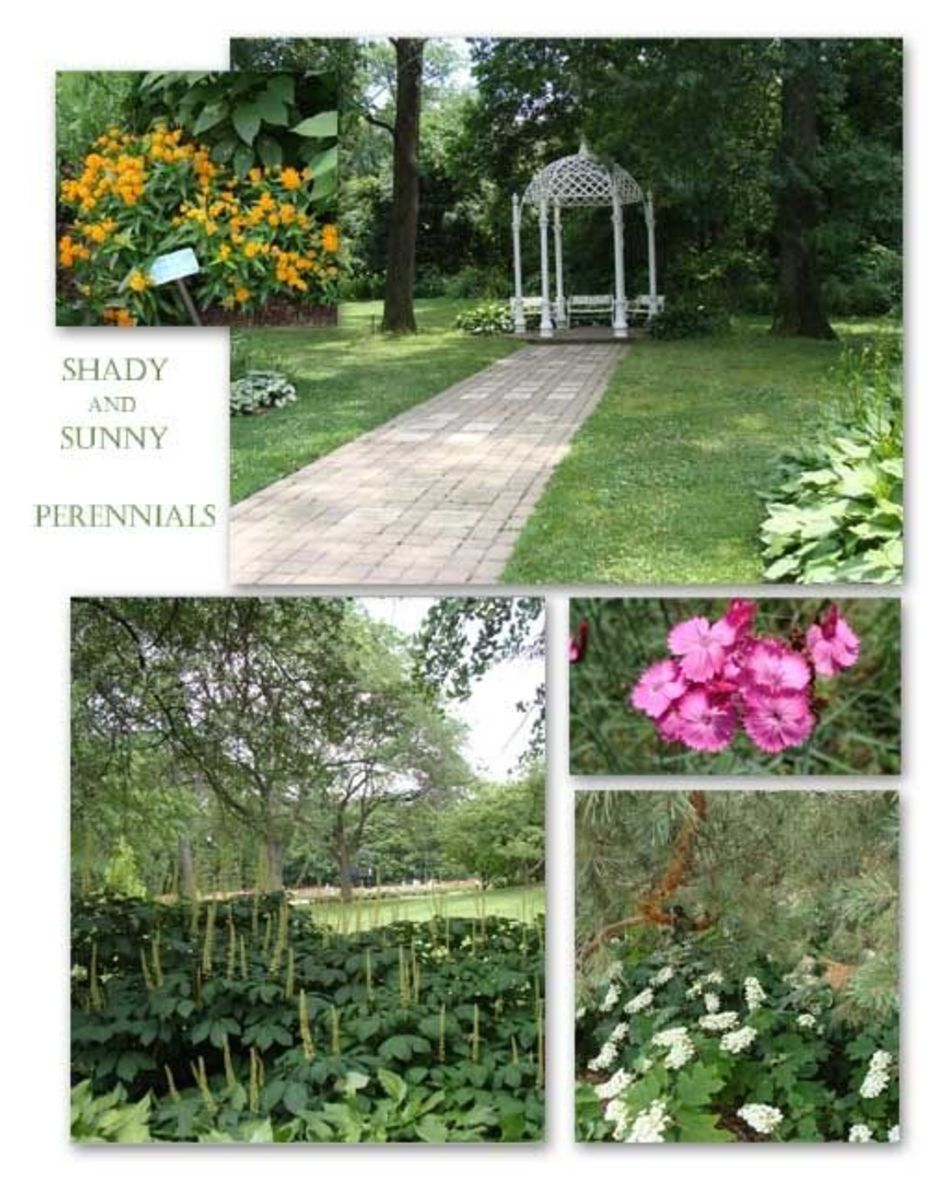 They Promise You A Rose Garden In Columbus Ohio Hubpages
