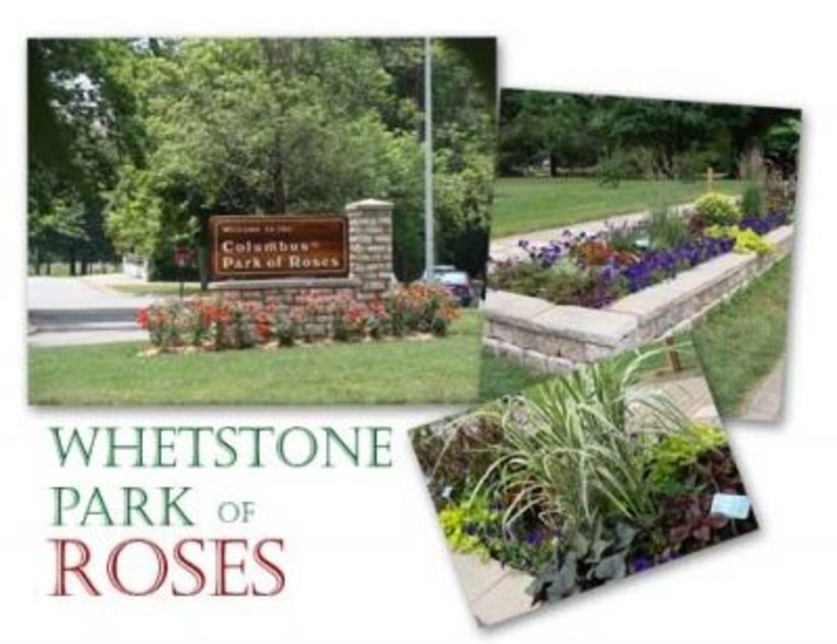 Welcome To The Park of Roses