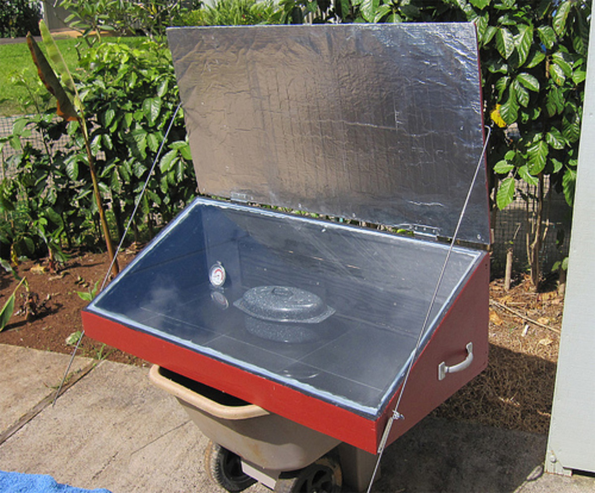Can You Cook Frozen TV Dinners in a Solar Cooker?