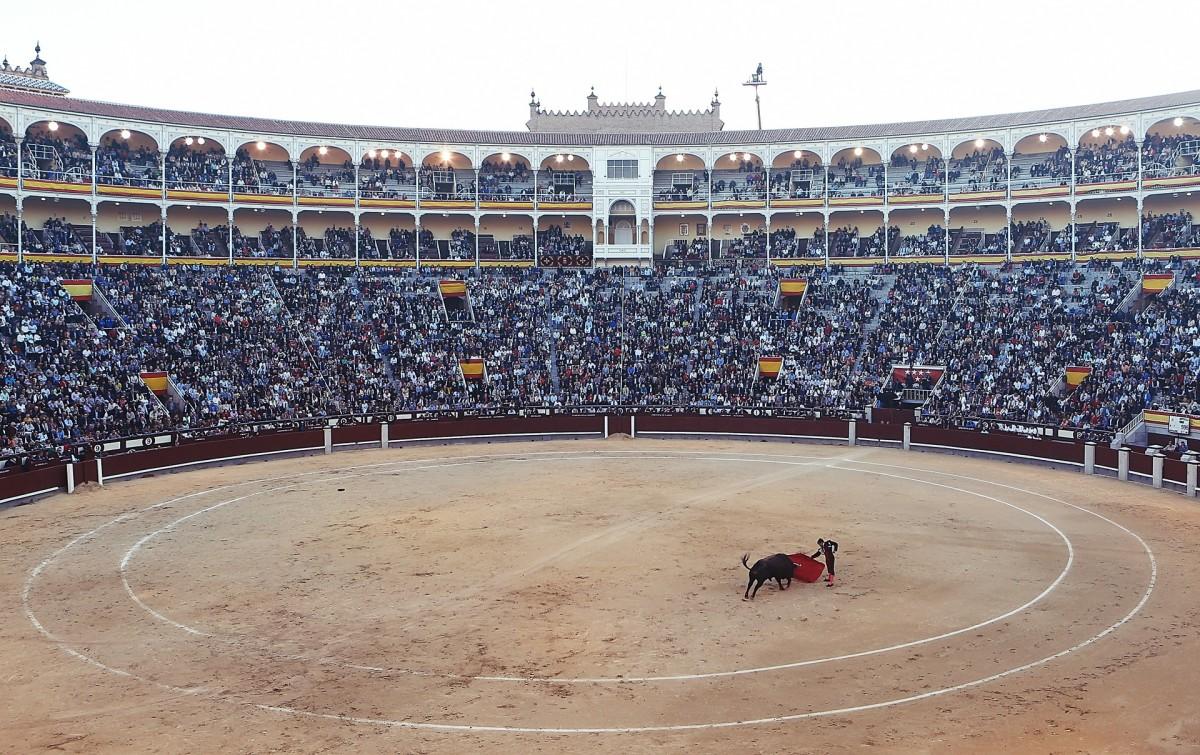 A Bullfight in Spain