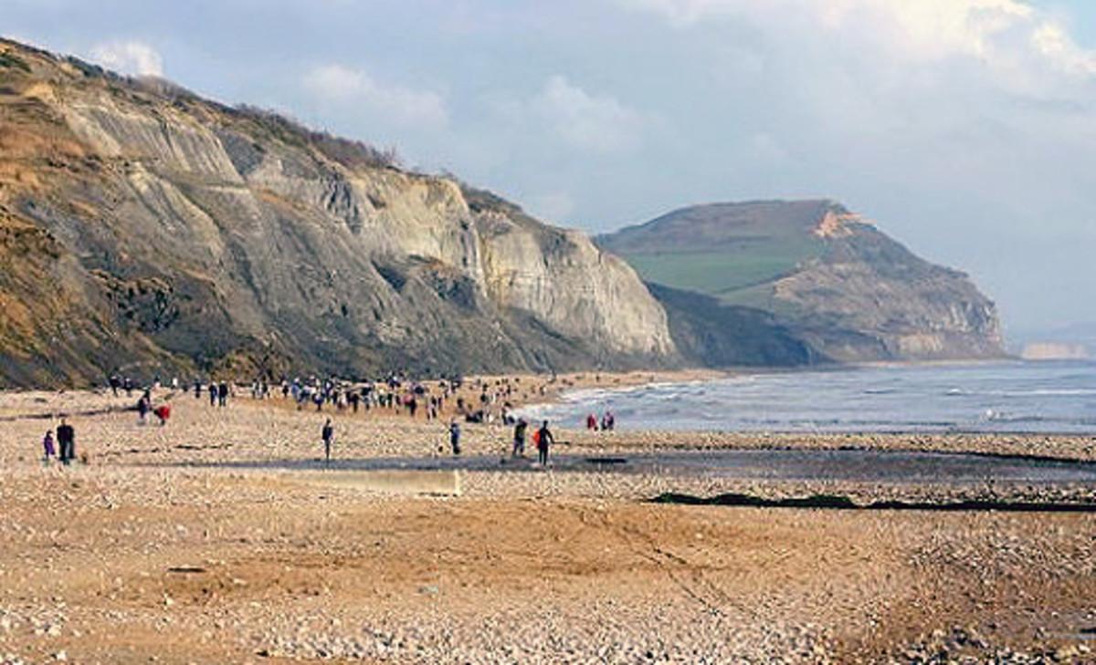 "Sea cliffs on the ""Jurassic coast"",Lyme Regis"
