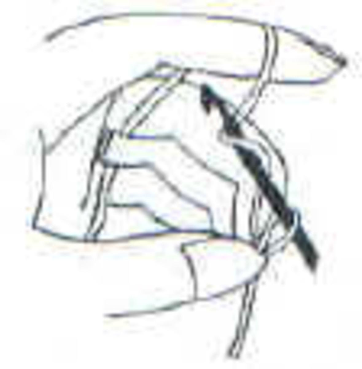 Loop yarn around hook and pull yarn through loop on hook.