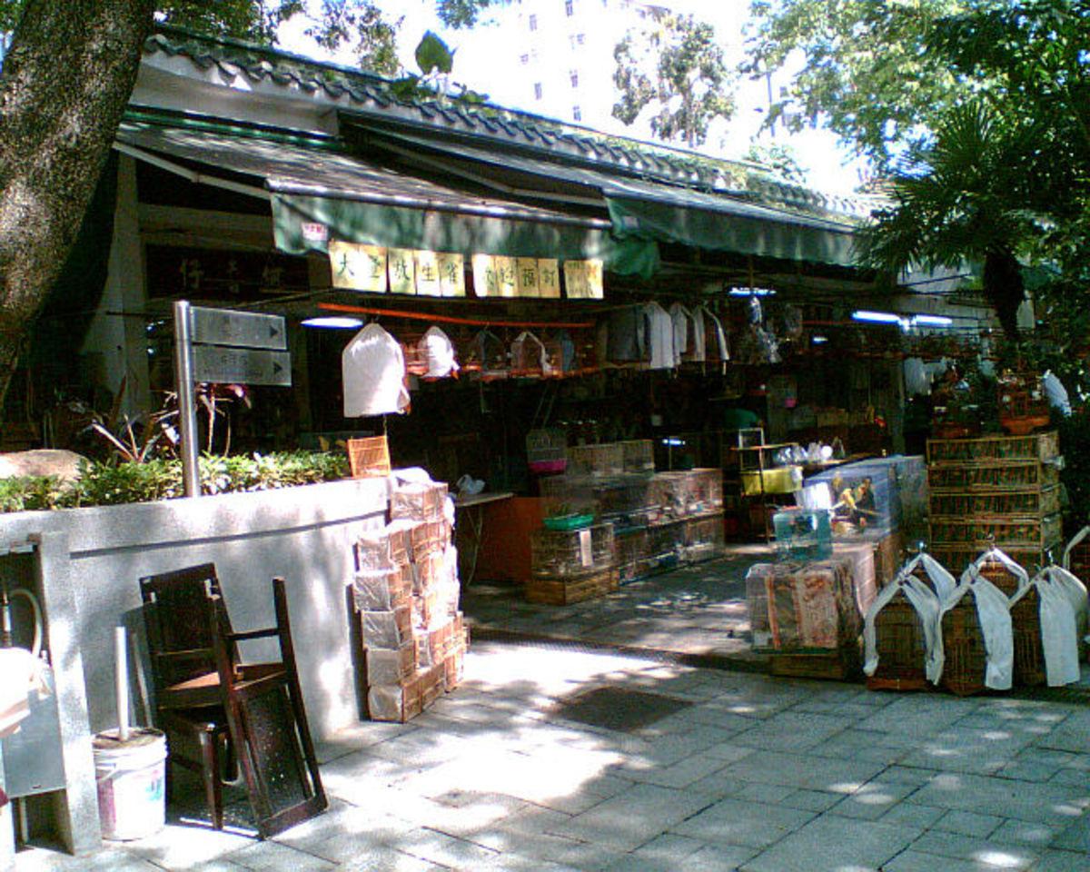 Shops in Bird Garden