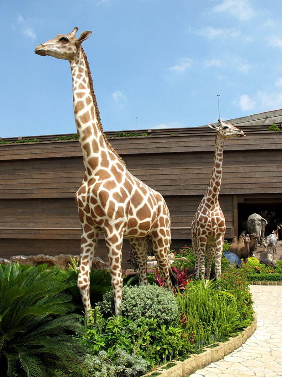 Ma Wan Park Noah's Ark