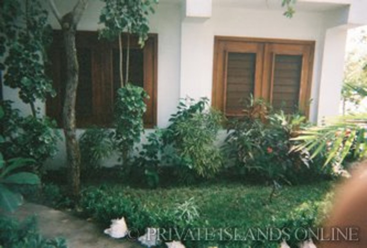 The small front garden