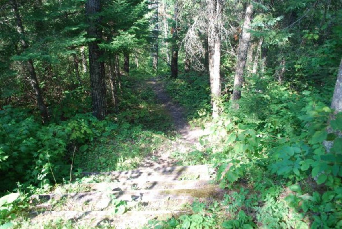 Steep Pathway, there are steps built in to make it easier, it's still a hike directly downhill!