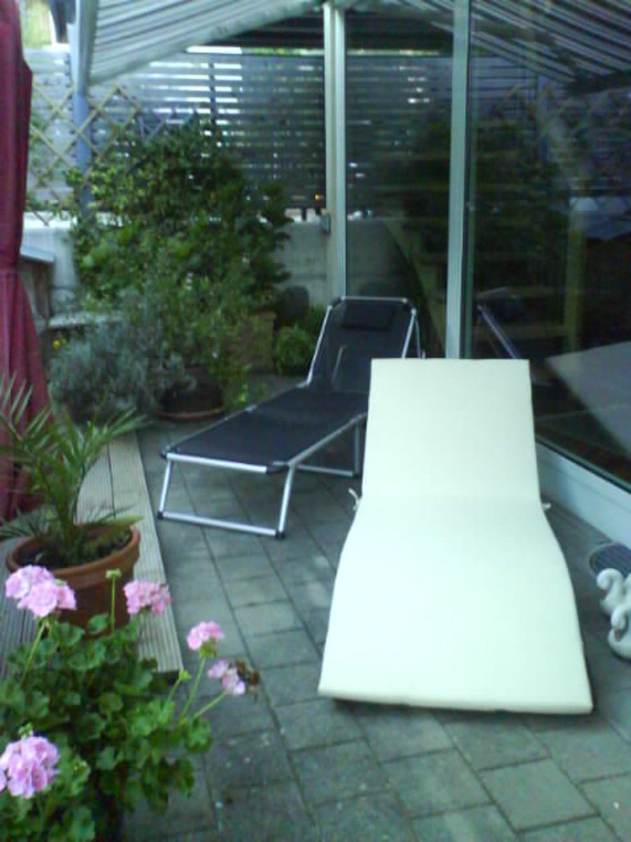 The Lounger in My Garden
