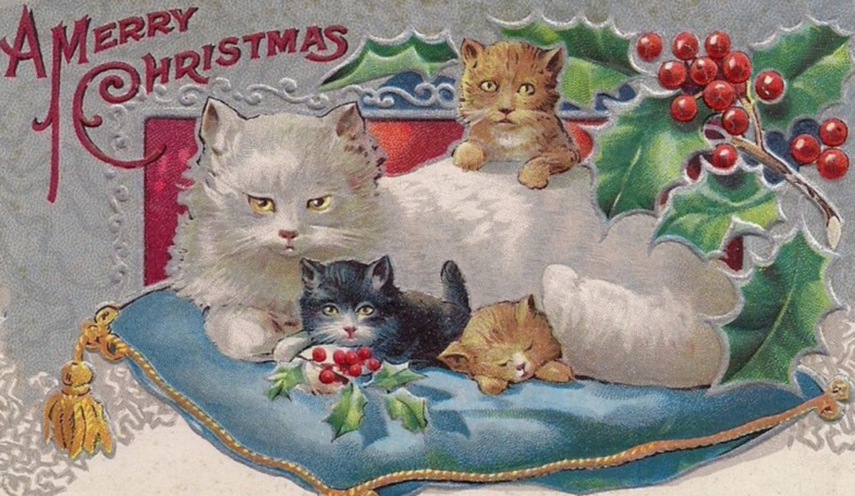 Christmas Cat and Kittens