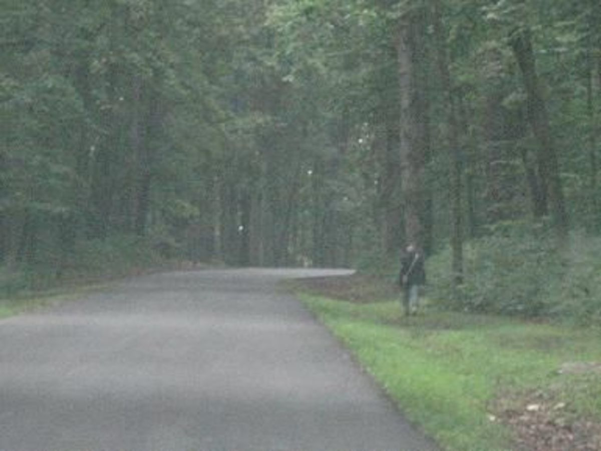 Gettysburg Ghost Photo. The ghost in this photo is plain as day. Is it not.