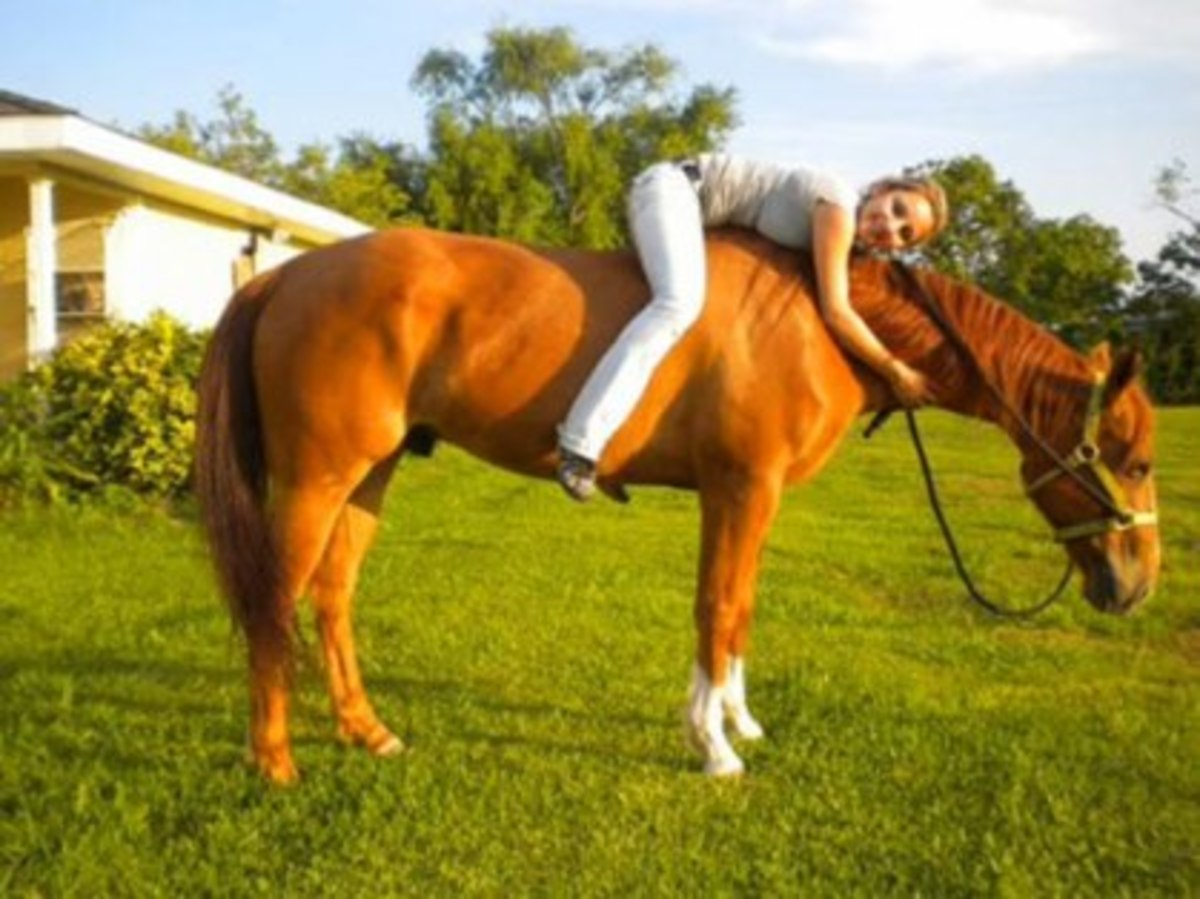 Elisabeth was involved with the Future Farmers of America, and she loved horses