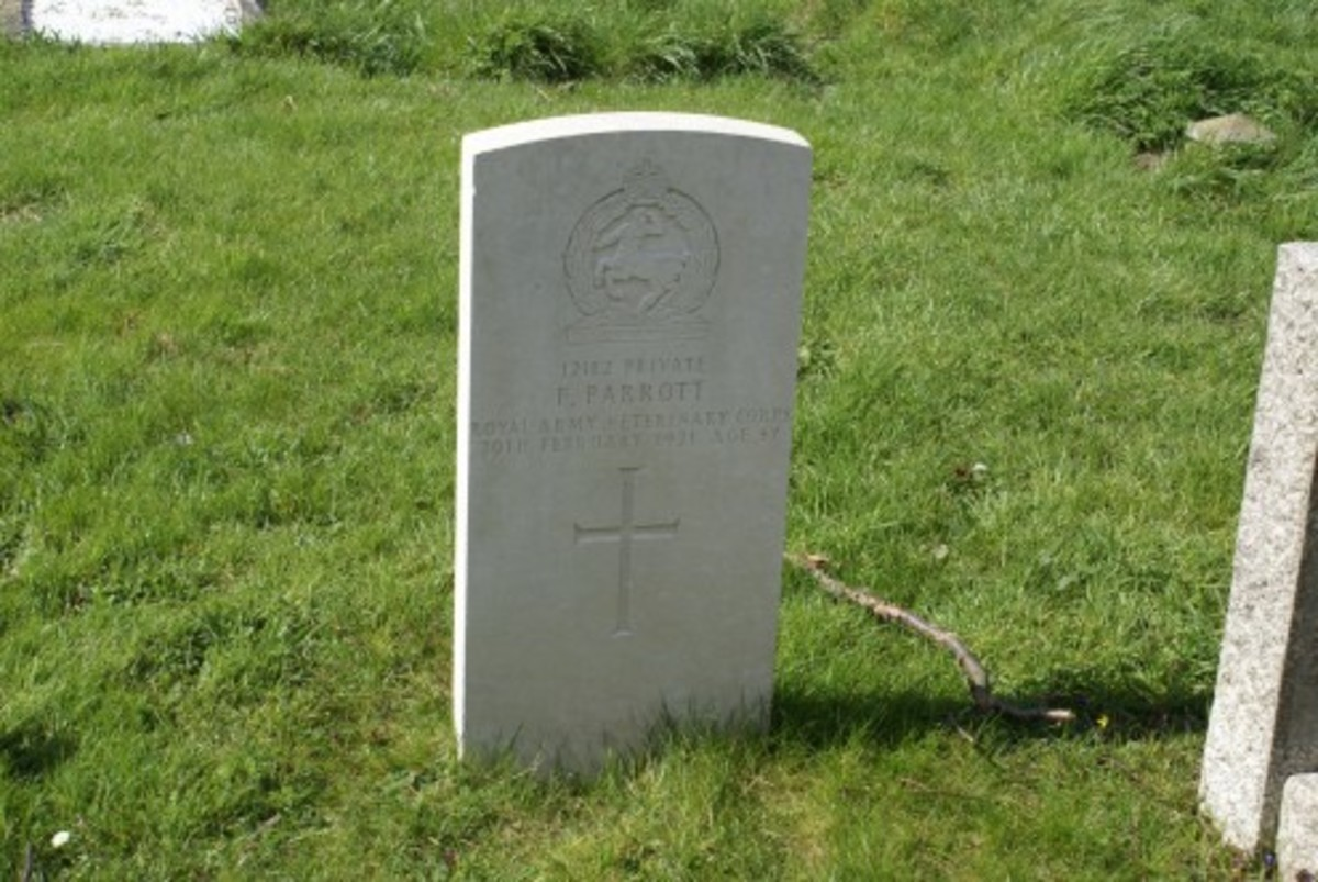 Private 12182, F. Parrott died 20 Feb 1921, gravestone location 50b, military gravestone, Royal Army Veterinary Corps, St. Lauds, Sherington
