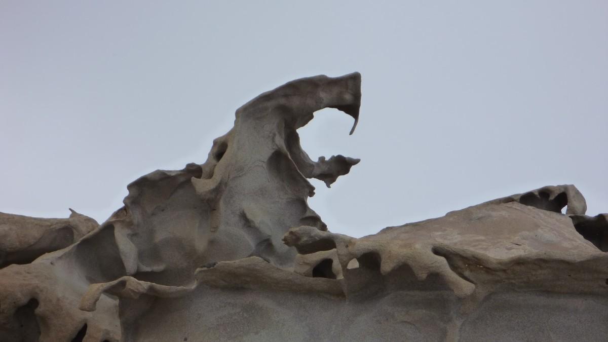 Cobra Ventifact, Mount Falconer, Antarctica