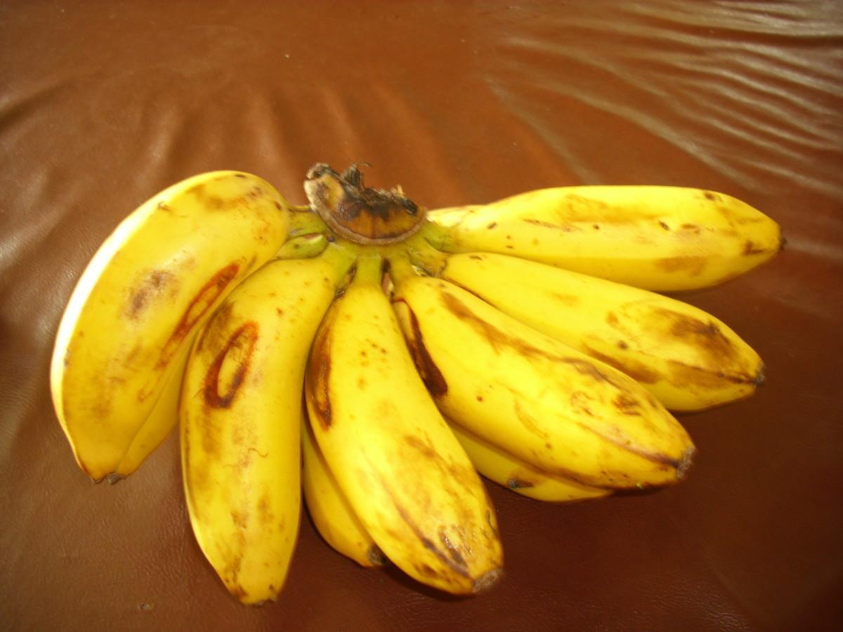 Philippine Ripe Bananas