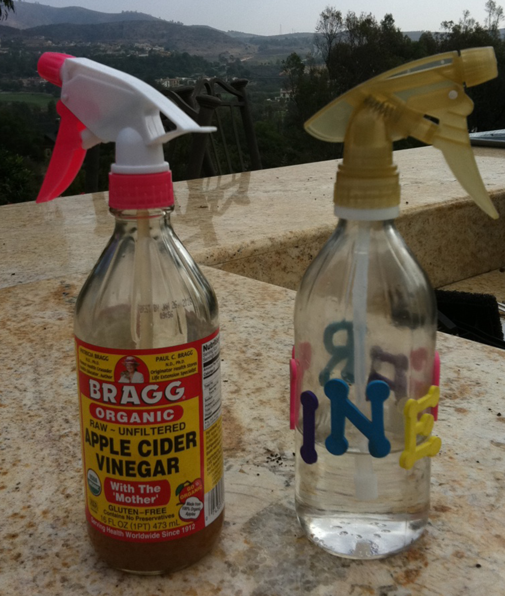My White Vinegar mix with water and my bottle of Dr Briggs Apple Cider Vinegar -