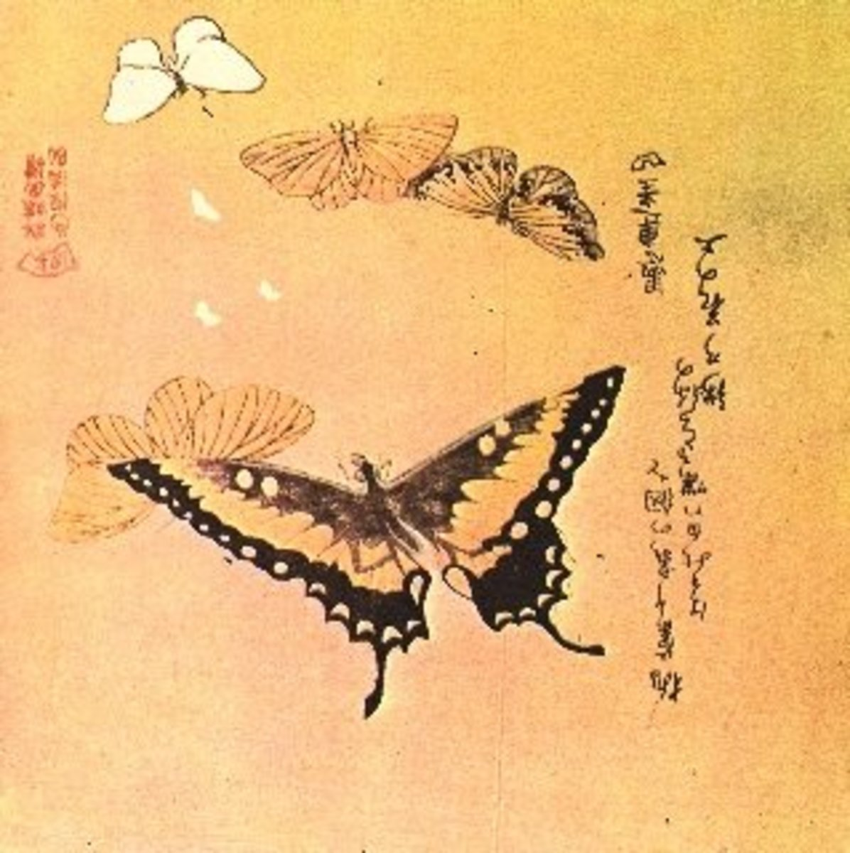 The Art of the Japanese Butterfly