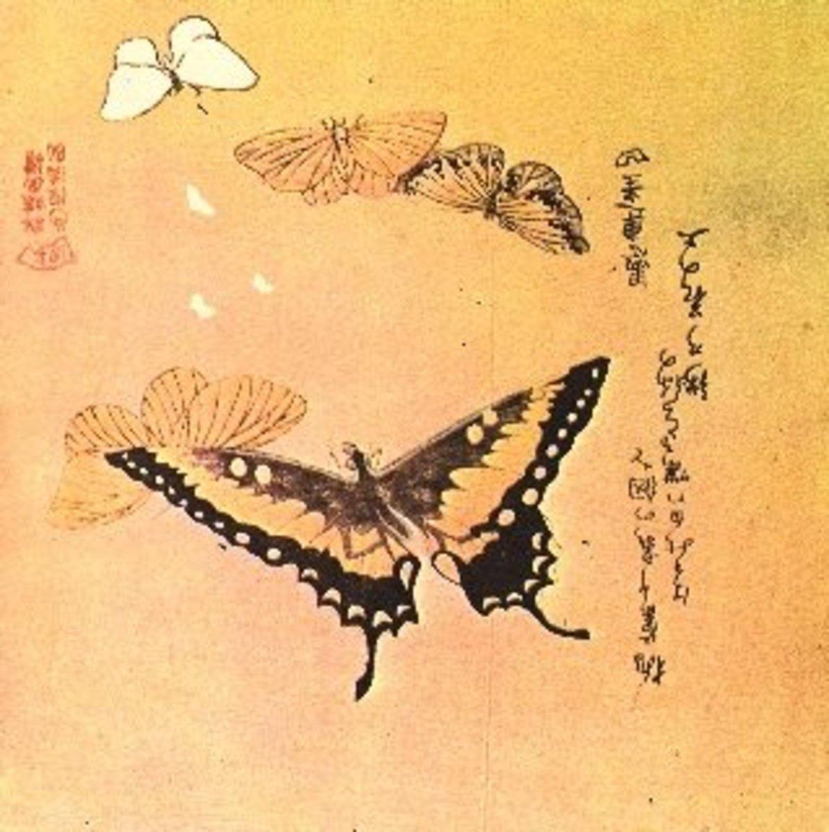 Butterfly print by Kudo Shunman (1757-1820).