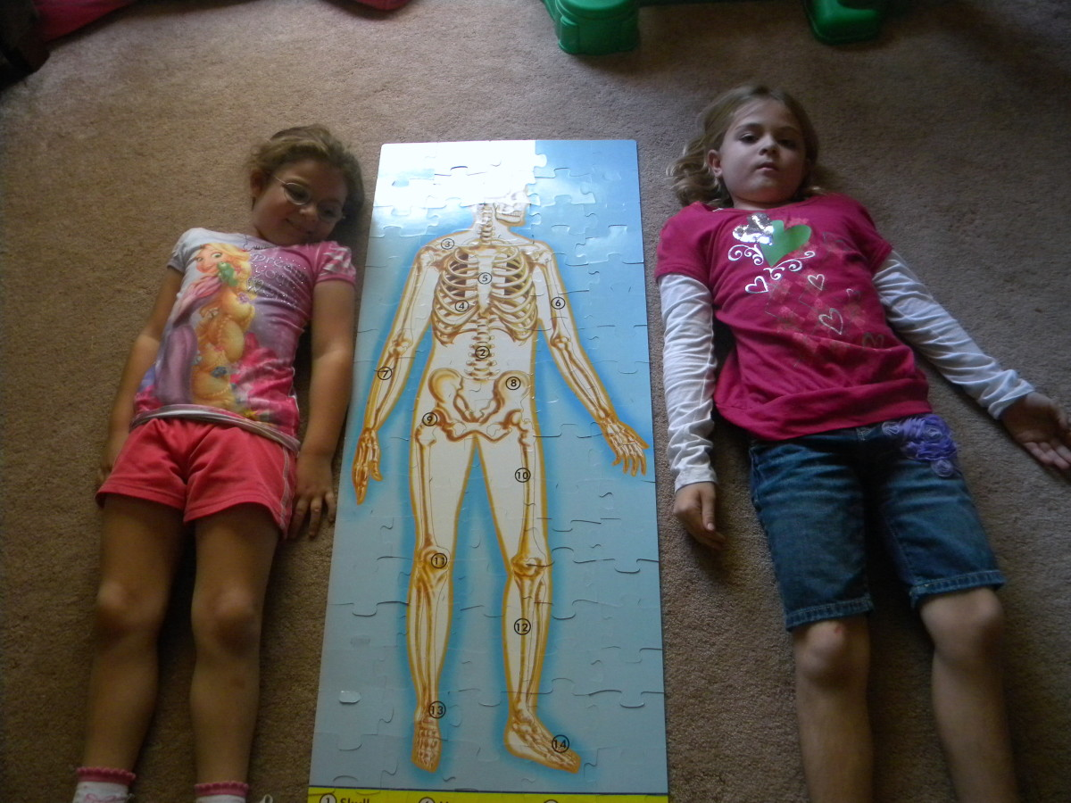 Teaching Children About Bones:  Fun Ideas for a Skeleton Unit