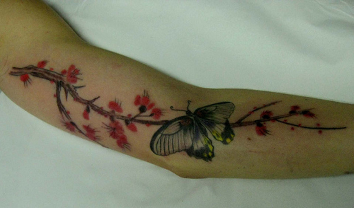 Cherry blossoms with butterfly tattoo