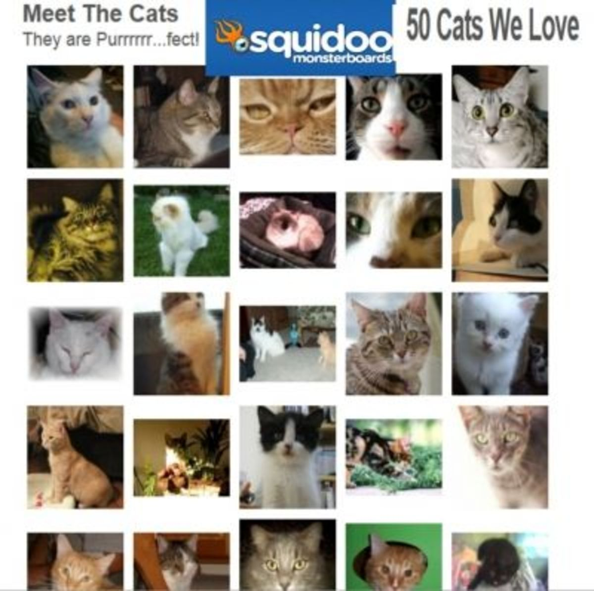 Sully was featured in the 50 Cats we love Monsterboard (btm rt corner)