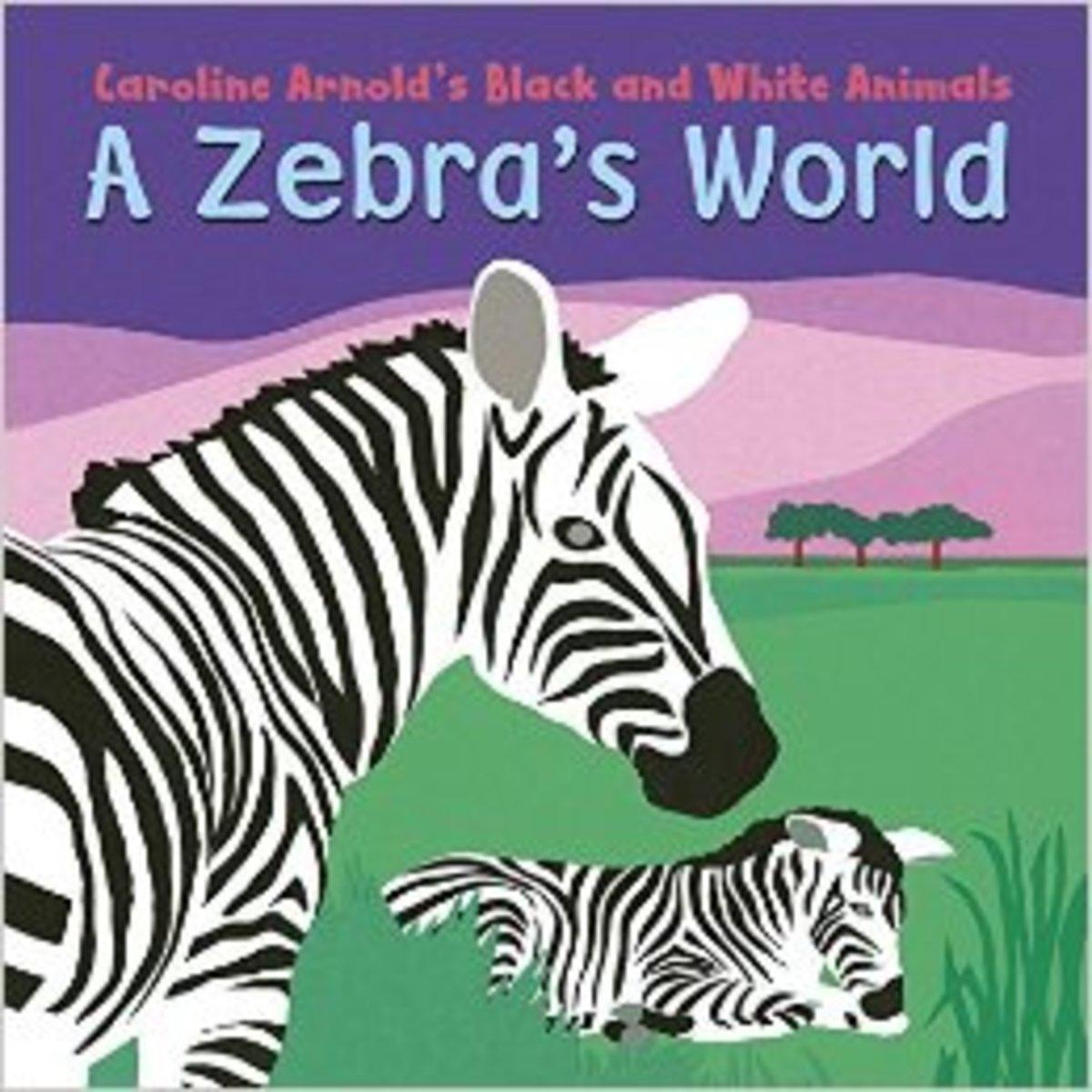 A Zebra's World by Caroline Arnold