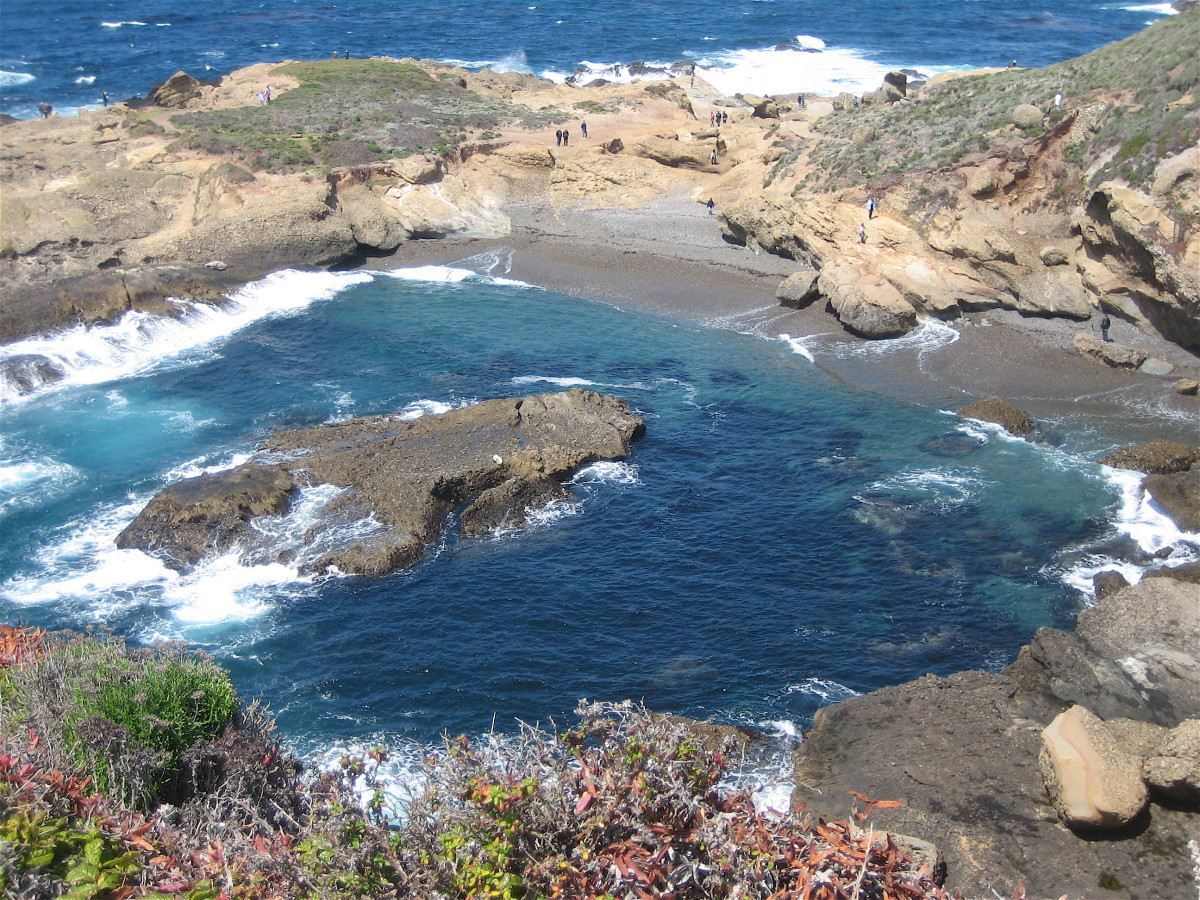 Photo Gallery of Point Lobos State Park