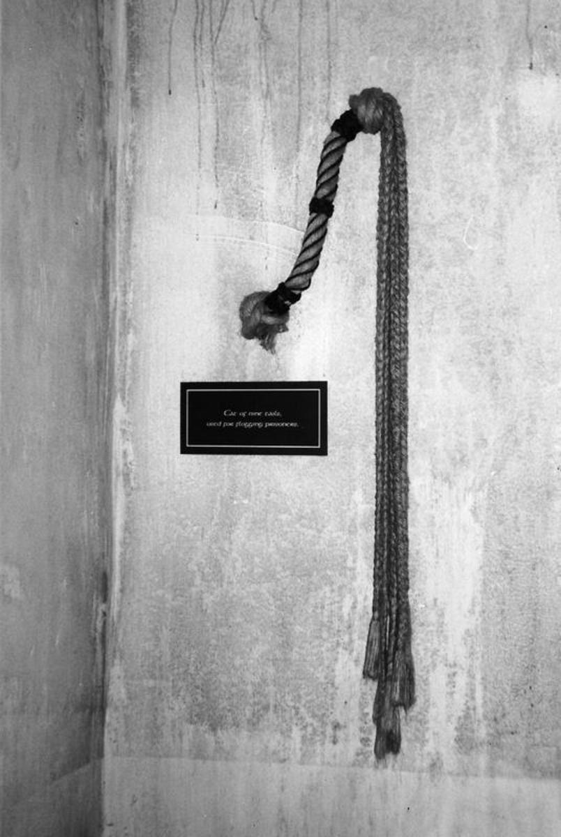This is the Whip used to Punish Women and Children in Wicklow Jail