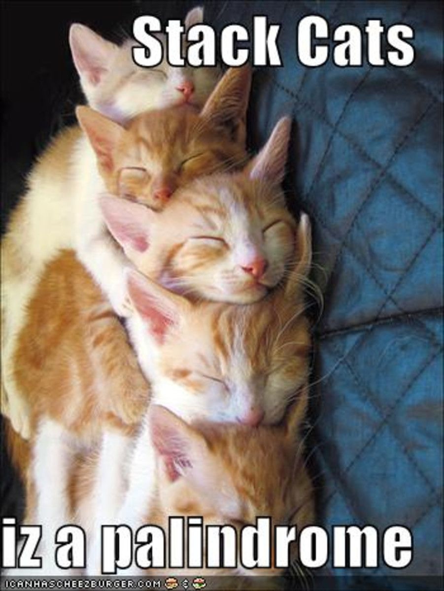 Stack Cats reads the same forward or backward.