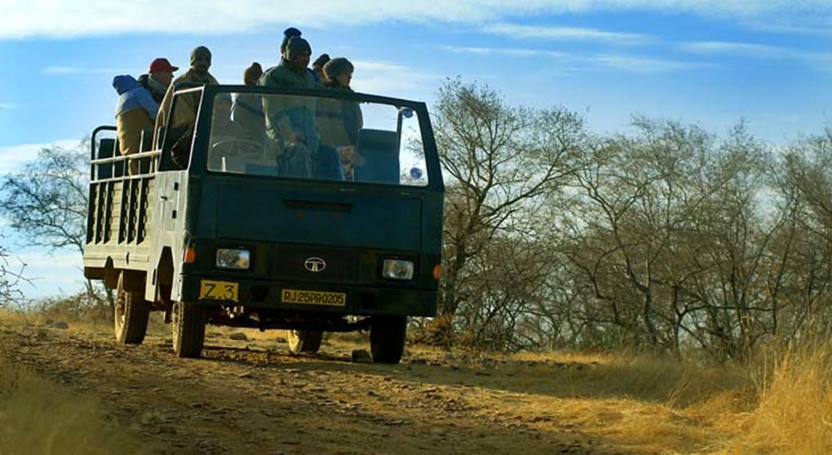 Canter Safari in Ranthambore