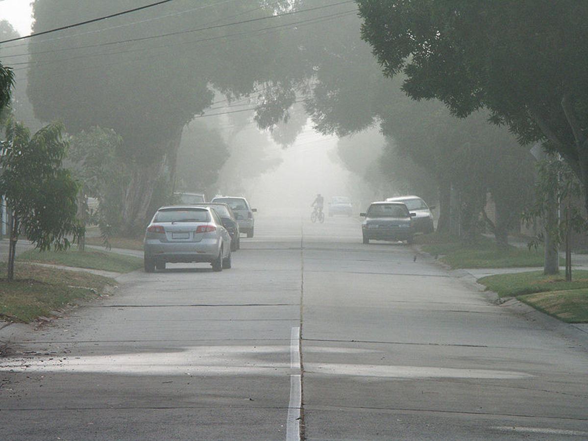 Fog - Visibility Hazard. Image Credit: Ian W. Fieggen via Wikimedia Commons