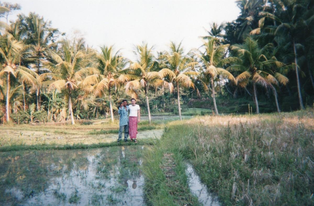 Paddy fields, Bali