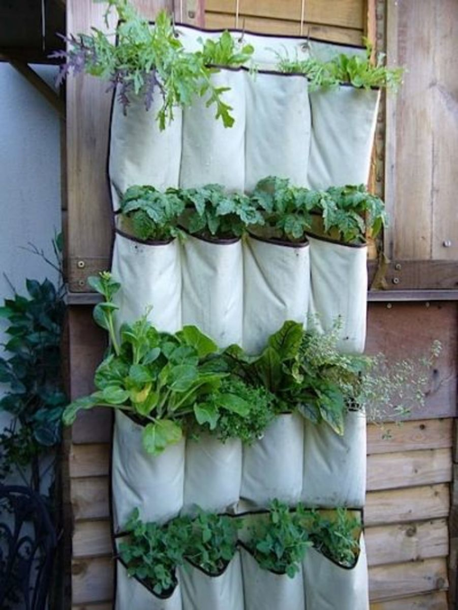 Vertical Wall Kits