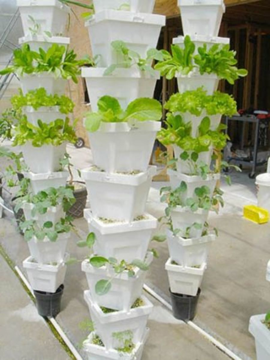 vertical-gardening-ideas-2