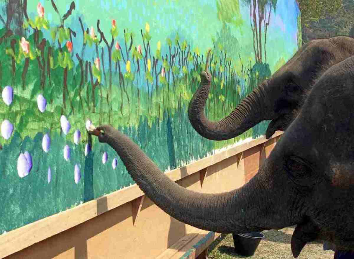 Art By Animals Elephants Gorillas And Many Other Species Take Up The Brush